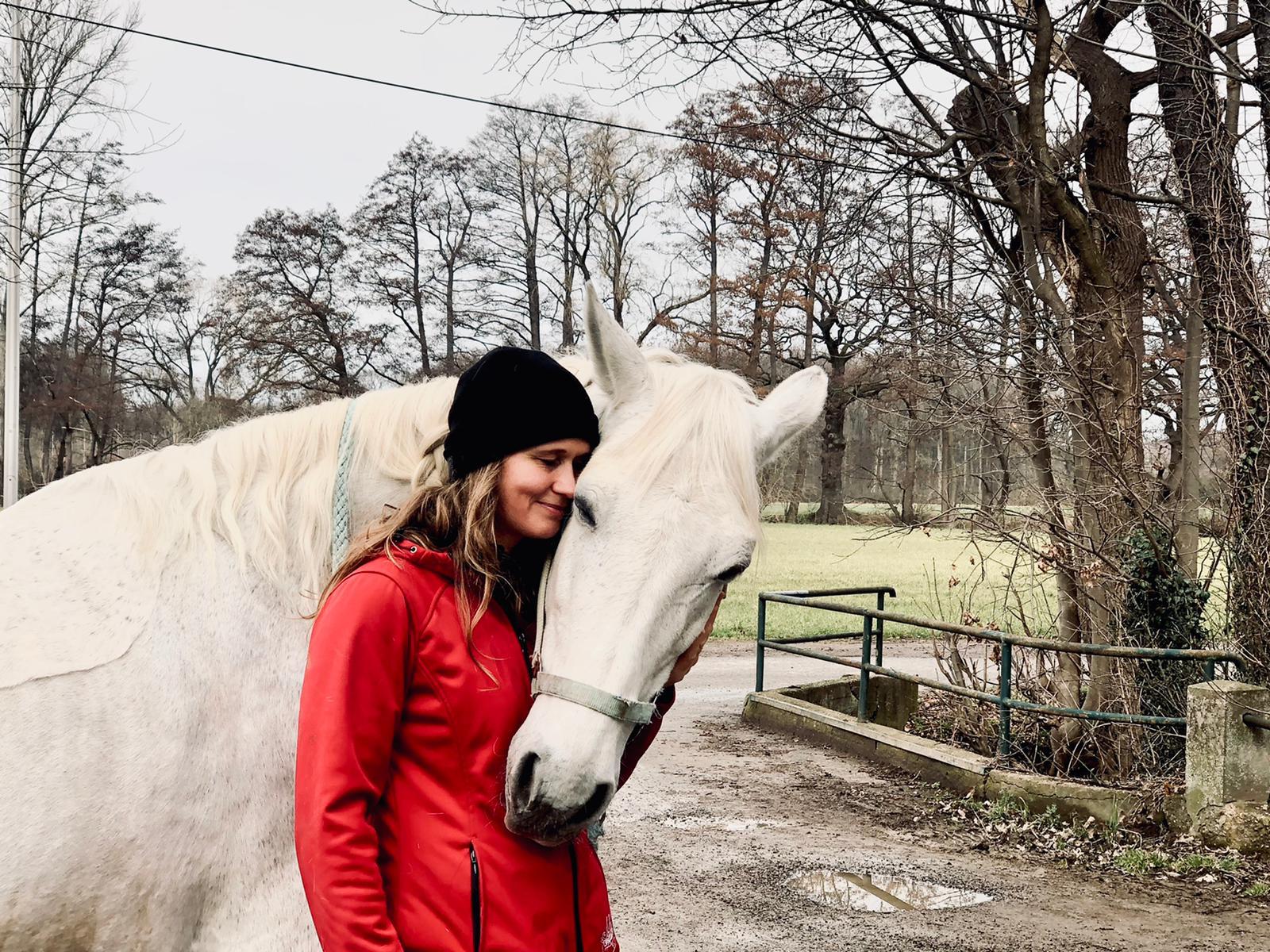 Pferdeliebe - Christina Schlupf - High5Life Mensch & Tier